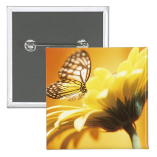 Beautiful Butterfly on a Flower Pin