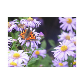 Beautiful Butterfly On Flowers Canvas Print