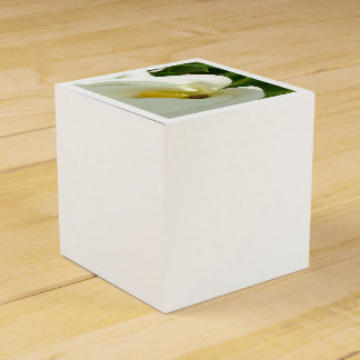 Beautiful Calla Flower On Green Natural Background Favour Boxes