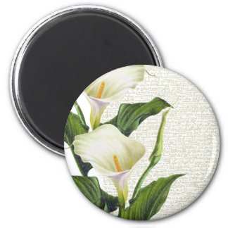 Beautiful Calla Lilies Magnet