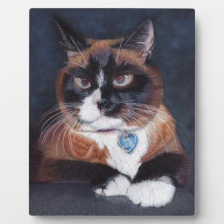 Beautiful Cat Plaque