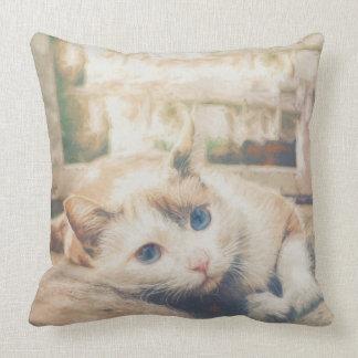 Beautiful cat throw pillow