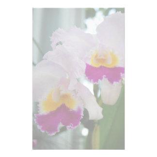 Beautiful Cattleya Orchid Stationery