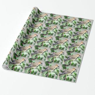 Beautiful Cedar Waxwing Wrapping Paper
