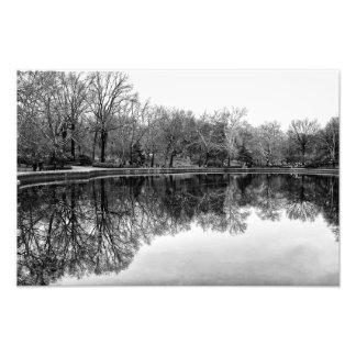 Beautiful Central Park Landscape in Black & White Photograph