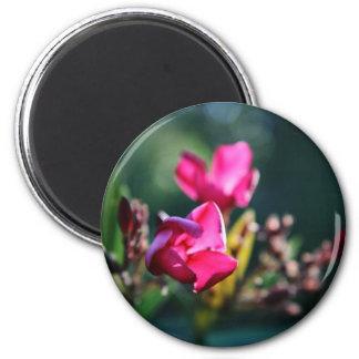 Beautiful Cherry Blossom Design 6 Cm Round Magnet