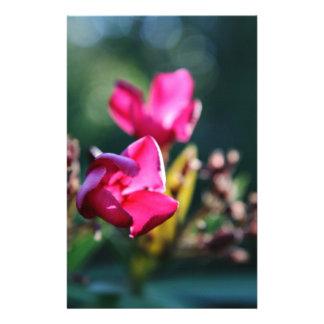Beautiful Cherry Blossom Design Stationery
