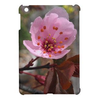 Beautiful Cherry Blossom Photo iPad Mini Case