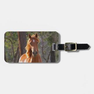 Beautiful chestnut horse photo portrait, gift luggage tag