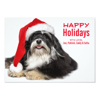Beautiful Christmas Havanese Dog With Santa Hat 13 Cm X 18 Cm Invitation Card