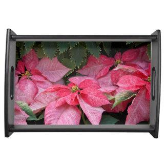 Beautiful Christmas Poinsettia Photo Serving Trays