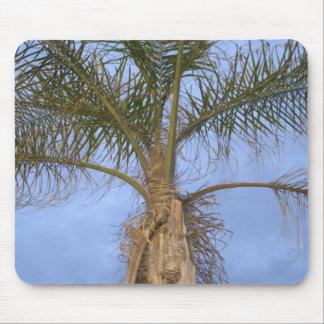 Beautiful close-up of Palm Tree Mousepad Mousepads