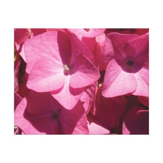 Beautiful close-up photo pink flower blossoms canvas print