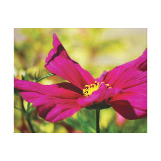 Beautiful close-up photo pink flower on purple canvas print