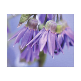 Beautiful close-up photo purple flower on blue canvas print