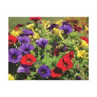 Beautiful close-up photo red purple yellow flowers canvas print