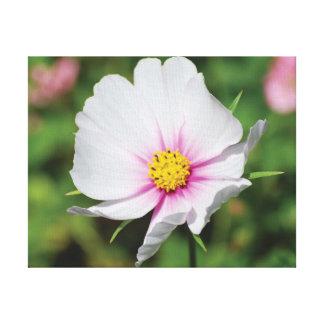 Beautiful close-up photo white flower canvas print