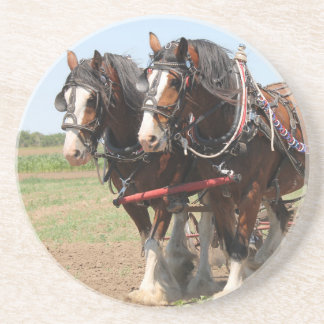 Beautiful clydesdale horses ploughing coaster