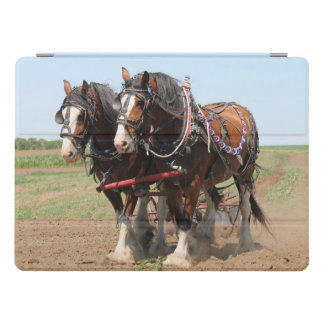 Beautiful clydesdale horses ploughing iPad pro cover