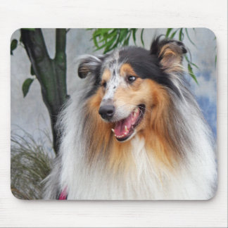 Beautiful Collie dog blue merle mousepad, gift Mouse Pad