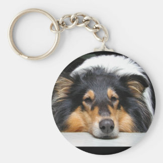 Beautiful Collie dog nose tri color keychain, gift Basic Round Button Key Ring