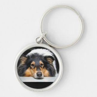 Beautiful Collie dog nose tri color keychain, gift