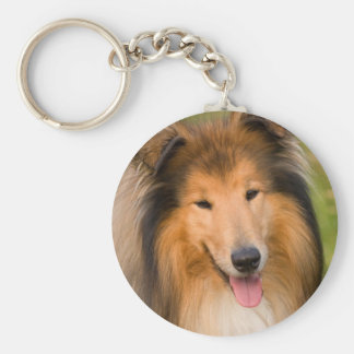 Beautiful Collie dog portrait keychain, gift idea Basic Round Button Key Ring
