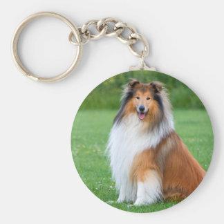 Beautiful Collie dog portrait keychain, gift idea Basic Round Button Key Ring