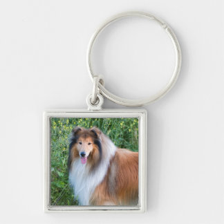 Beautiful Collie dog portrait keychain, gift idea Silver-Colored Square Key Ring