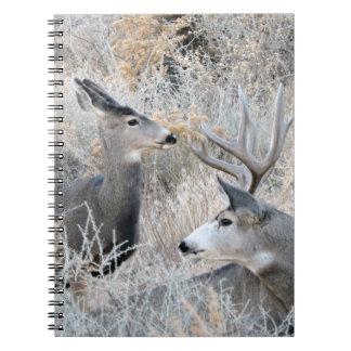 Beautiful Colorado Buck and Doe Notebook