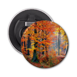 Beautiful colorful autumn fall forest sunbeams bottle opener