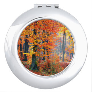 Beautiful colorful autumn fall forest sunbeams vanity mirror