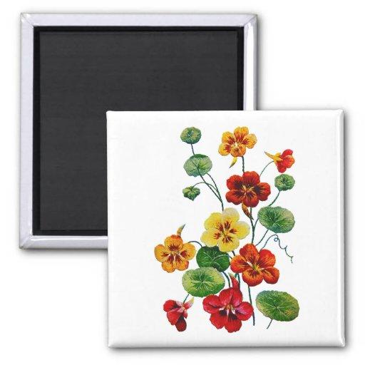 Beautiful Colorful Embroidered Nasturtiums Fridge Magnet