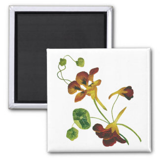 Beautiful Colorful Embroidered Nasturtiums Square Magnet