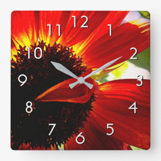 Beautiful colorful red orange daisy close-up photo square wall clock
