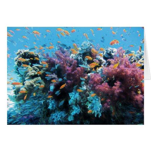 Beautiful colorful underwater world card