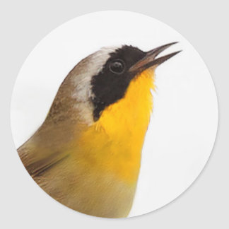 Beautiful Common Yellowthroat Warbler Round Sticker