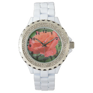 Beautiful Coral Rose Flower with Raindrops Watch