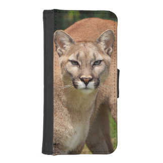 Beautiful cougar close-up iPhone SE/5/5s wallet case