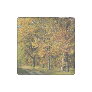 Beautiful Country side road Stone Magnet