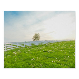 Beautiful countryside landscape in spring. poster