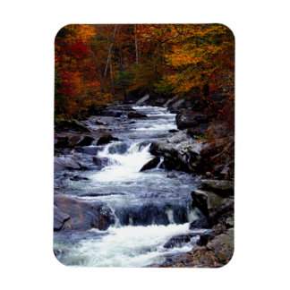 Beautiful creek nature scenery magnet