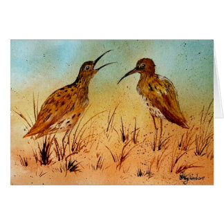 Beautiful curlew wildlife bird greeting cards
