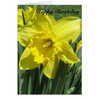 Beautiful Daffodil Birthday Card