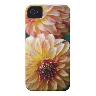 Beautiful dahlia flower print iPhone 4 case