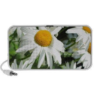 Beautiful daisies close up notebook speakers