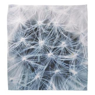beautiful delicate dandelion flower photograph bandana