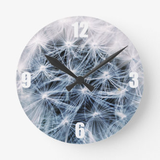 beautiful delicate dandelion flower photograph round clock