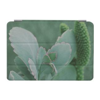 Beautiful Desert Plant Art Photograph iPad Mini Cover