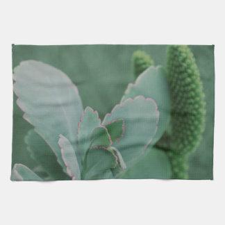 Beautiful Desert Plant Art Photograph Tea Towel